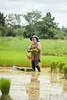 Wet Work In Isaan
