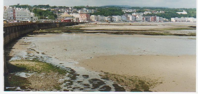 Douglas at low tide.