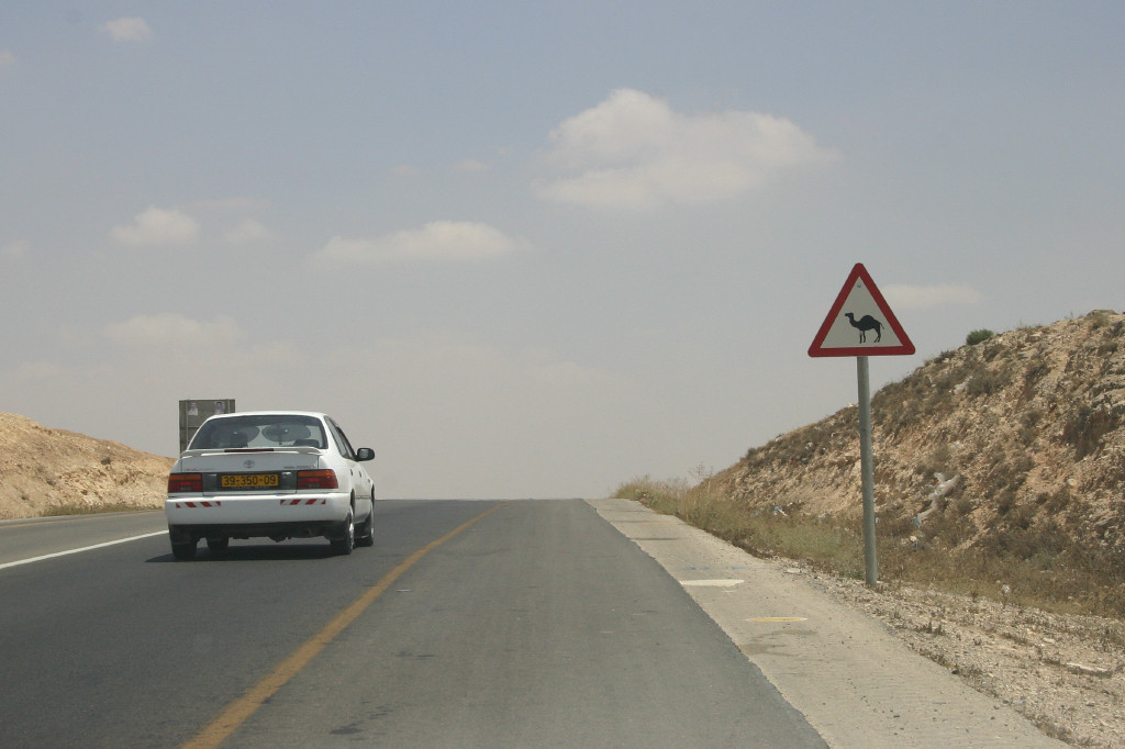 Northern Negev desert, on the way to the Dead Sea- a road sign not seen often in the U.S.