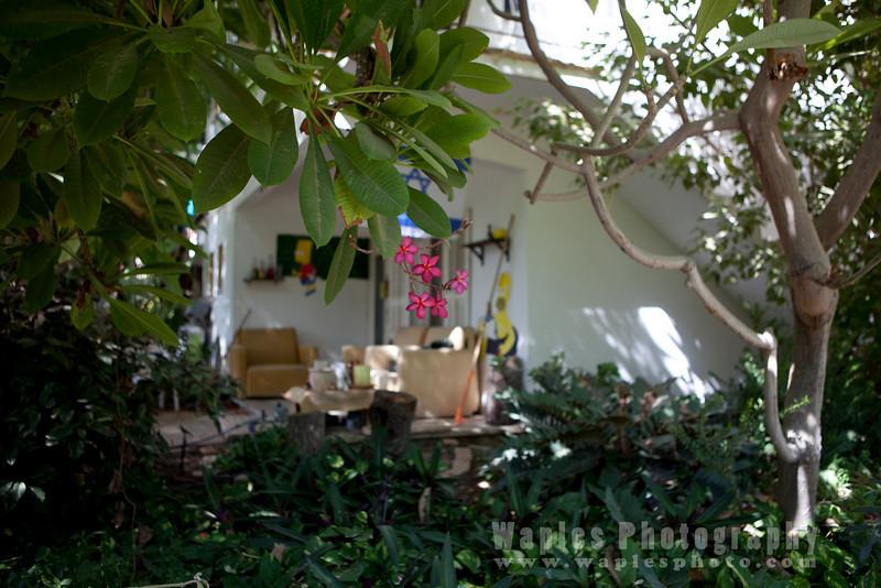 Kibbutz Home