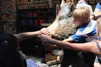 Rubbing the Cinghiale for Luck, in Florence