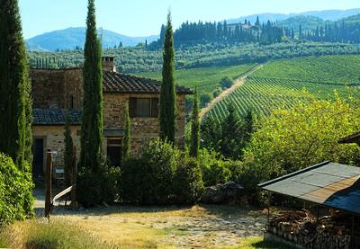 Tuscan Morning Near Greve