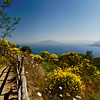 View of Mt. Vesuvius from Monte Solaro, Capri