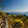 View of Mt. Vesuvius from Monte Solaro, Capri