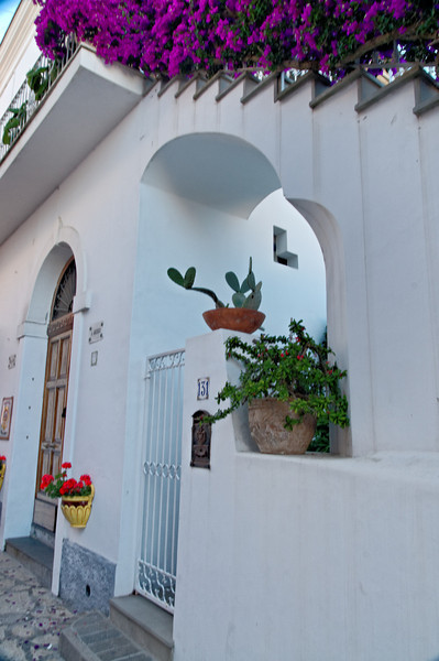 Anacapri Front Door