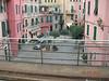 Vernazza street scene - Vernazza street scene