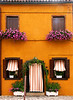 Flowerboxes, Burano, Italy, July 2004