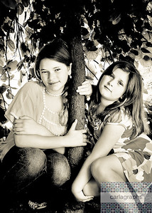 Girls Under Tree BW-