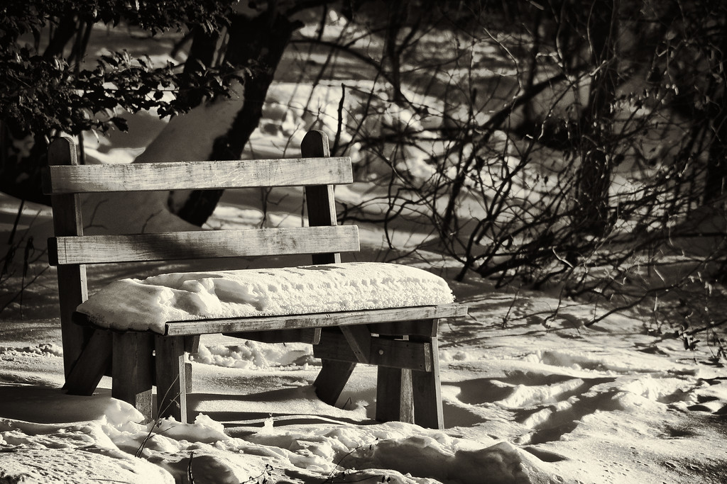 Feb 14th,  I had all I could take of being snowed in the house lately.  I grabbed the camera and took a walk in the woods.  Didn't see many little animals out and about, they must be snowed in as well.  I did like this shot of the bench near the pond.
