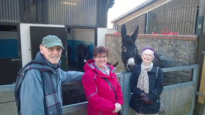 24Feb2016 - Donkey sanctuary Sidmouth