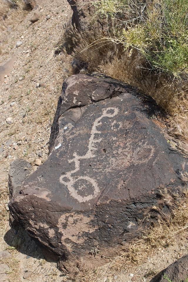 Kawaiisu indian petroglyphs at Sheep Spring in the El Paso Mountains, California