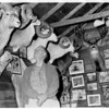 Many of Dad's big-game trophies were displayed in a trophy room attached to the family house in Lewiston, ID. Most of the tropies now are on public display at the Jack O'Connor Center in Lewiston.