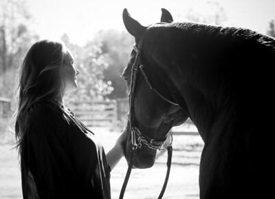 janet horse 2014 web-7610