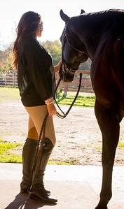 janet horse 2014 web-7638