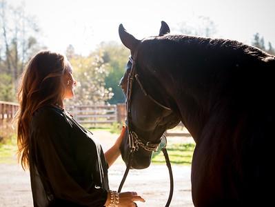 janet horse 2014 web-7604