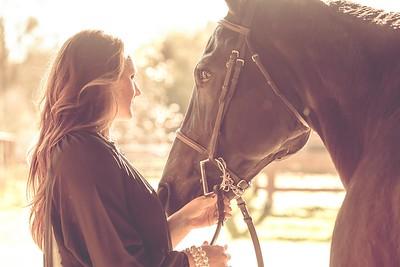 janet horse 2014 web-7592
