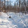 Terra Cotta Woods, Pointe Claire QC