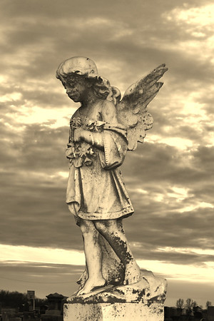 Angel at the Hills Baptist Church Cemetery in Hamilton Co<br /> <br /> Photographer's Name: Colleen Sanders Brown<br /> Photographer's City and State: Anderson, IN