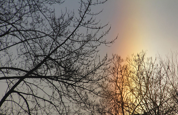 The sun dogs were very prominent in Anderson this morning.<br /> <br /> Photographer's Name: Jerry Byard<br /> Photographer's City and State: Anderson, Ind.