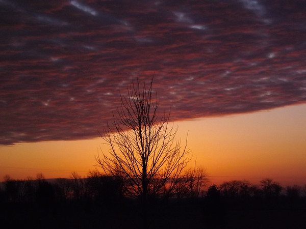 A January morning, taken in Richland Township.<br /> <br /> Photographer's Name: J.R.  Rosencrans<br /> Photographer's City and State: Alexandria, Ind.