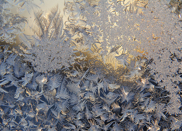 The floral pattern was very pretty on my window this morning in the below zero temperatures.<br /> <br /> Photographer's Name: Jerry Byard<br /> Photographer's City and State: Anderson, Ind.