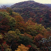 Autumn in the mountains of Tochigi Prefecture.