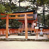 One of the many sub-shrines at Miyajima.