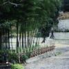Outside Jigen-ji, a Buddhist temple in Miyako City.