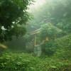 Mountain shrine near Tanohata.