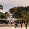 The great Buddha at Kamakura. What the hell are all those people doing in my shot?!