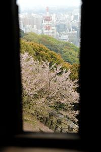 Vue du château de Matsuyama, île de Shikoku, Japon, avril 2014.