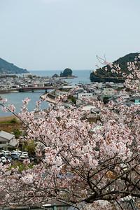 Vue du temple de la Médecine, île de Shikoku, Japon, avril 2014.