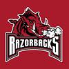 Arkansas-Razorbacks-Logo.jpg