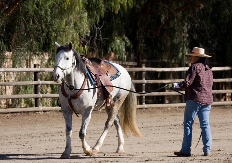 Janine helps the PMU mare make it.