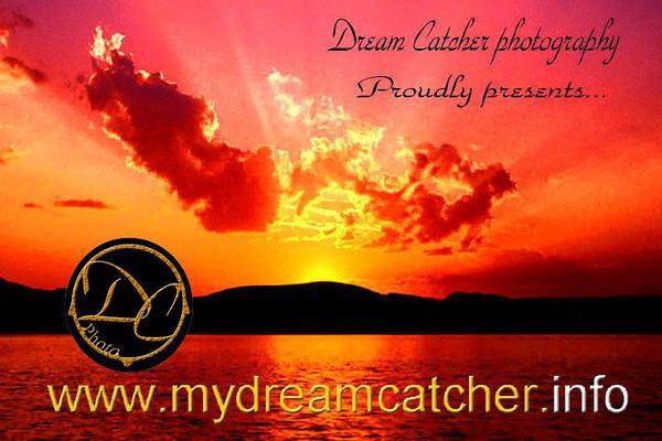 Dream2001