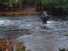 When crossing swift rain-swollen streams, trekking poles are a must.