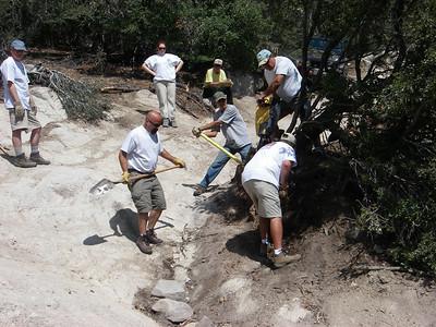 John Bull Tree Removal