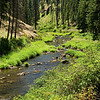 Camas Creek, a picturesque tributary of the North Fork of the John Day River