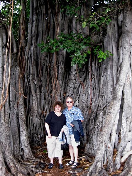 Hawaii John, Wendy, and Banyon Tree