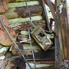 The house was lived in recently enough that wiring for electricity was added
