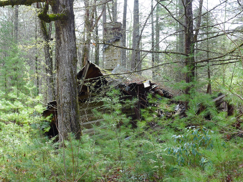 A broader view, showing the house in its environs