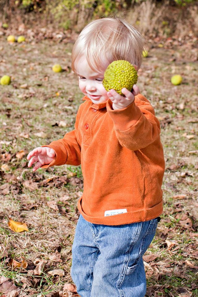 Love him in orange...especially in fall.  gotta love the hedge apples.