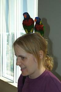 Jennifer with lorikeets