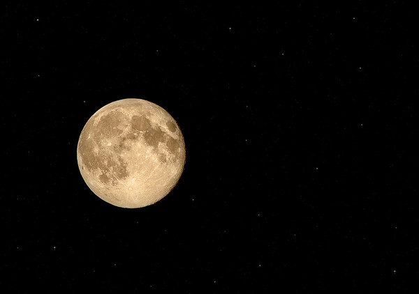 The super moon on Sunday evening out my back door<br /> <br /> Photographer's Name: Terry Lynn Ayers<br /> Photographer's City and State: anderson, IN