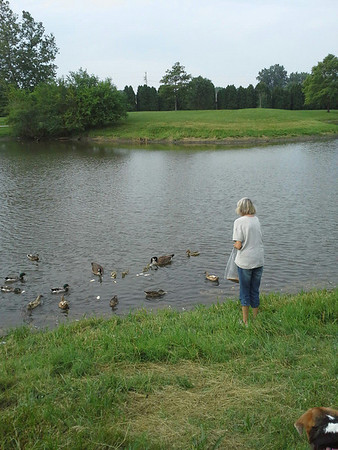 My mama dagi feeding the ducks at the park on a beautiful day!<br /> <br /> Photographer's Name: Sheelah Schmidt<br /> Photographer's City and State: Anderson, Ind.