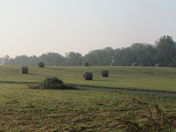 Making hay.<br /> <br /> Photographer's Name: Brian Fox<br /> Photographer's City and State: Anderson, Ind.