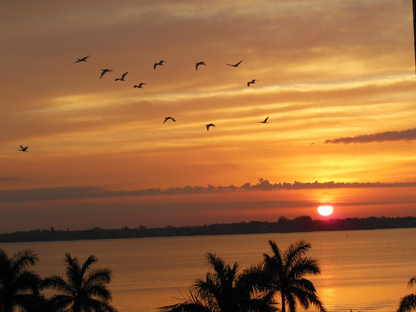 Sunrise in Cape Coral, Florida<br /> <br /> Photographer's Name: Helen Greer<br /> Photographer's City and State: Anderson, Ind.