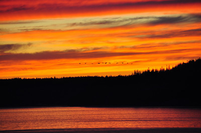 Sunset #4             6-05-2010