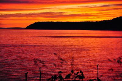 Sunset #6              6-05-2010