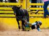 Jr Rodeo-8